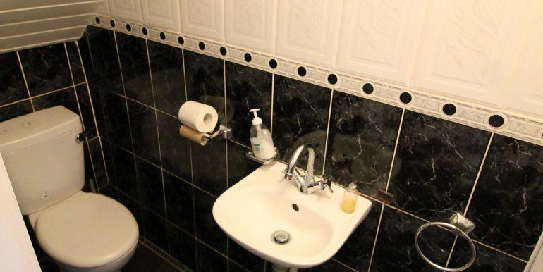 ds toilet
